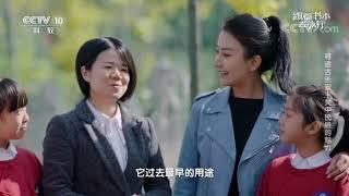 [跟着书本去旅行]拴马桩是什么?为什么在关中地区十分常见?| 课本中国