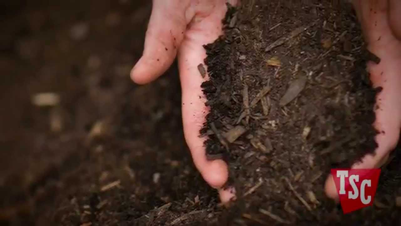 How And Why To Compost You