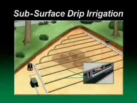 Podziemna Linia Kroplująca Xfs Rain Bird Instalacja