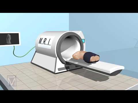 See-Thru Science: How MRI Machines Work