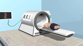 See-Thru Science: How MRI Machines Work