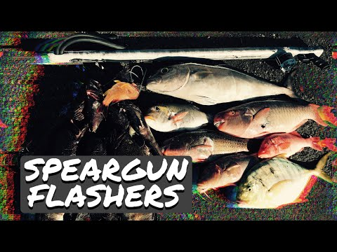 How To Add A Flasher On Your Speargun W/ No Tangles