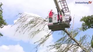 Sturmtief Sebastian: Baum kracht in Melchiorshausen auf Hausdach