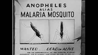 The Winged Scourge (1943) |Mosquitoes| Malaria Prevention | Film
