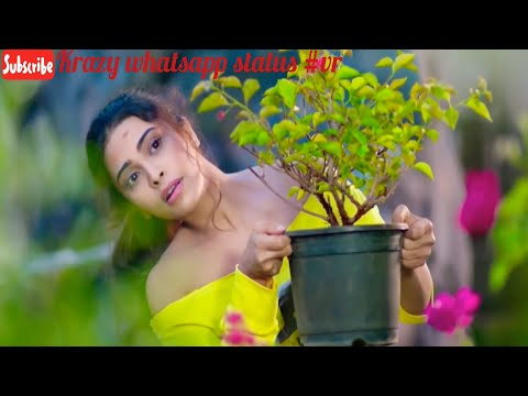 Zara Si Duriya Bhi Nahi Tumse Gawara| Best Romantic Love 30 Sec Whatsapp Status Video Download 2019