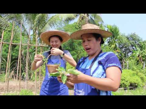 Organic Farm Tour & Thai Cookery Course. May 2-2017