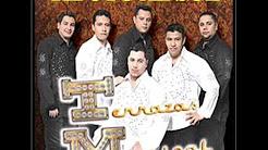 ACTOS DE UN TONTO - TERRAZAS MUSICAL