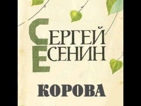 Изображение предпросмотра прочтения – ВероникаГриценко читает произведение «Корова» С.А.Есенина