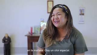 Michele testimony