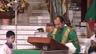 Basílica de Guadalupe. XVII Domingo Ordinario. Misa RESUMEN. Domingo 28 de Julio de 2013.