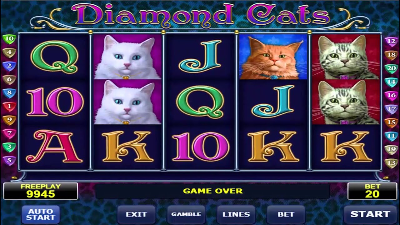 Cats Casino Game