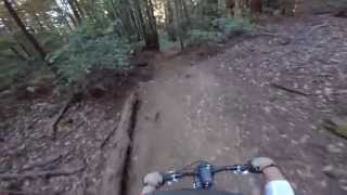 LockEmUp And DeadCamper Trails (uncut) Near UCSC/Felton, 31 Aug 2014