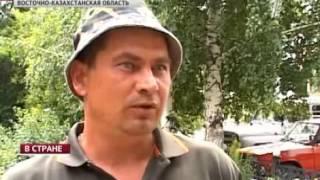 В Восточном Казахстане пчеловоды терпят убытки(Заявляют, что виной всему - незапланированная химическая обработка полей, о которой их никто не предупредил..., 2013-07-31T04:13:33.000Z)