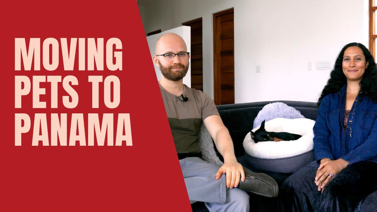 Moving to Panama with Pets