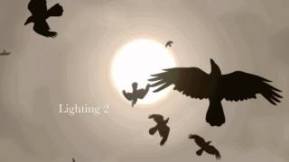 Animated Crows - Lighting Test