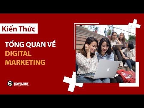 Tổng Quan Về Digital Marketing Cho Người Mới Bắt Đầu | Tự học Digital Marketing | EQVN.NET