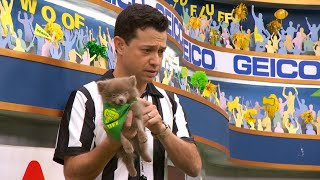 Puppy Profile: Morris the Pomeranian | Puppy Bowl XIV