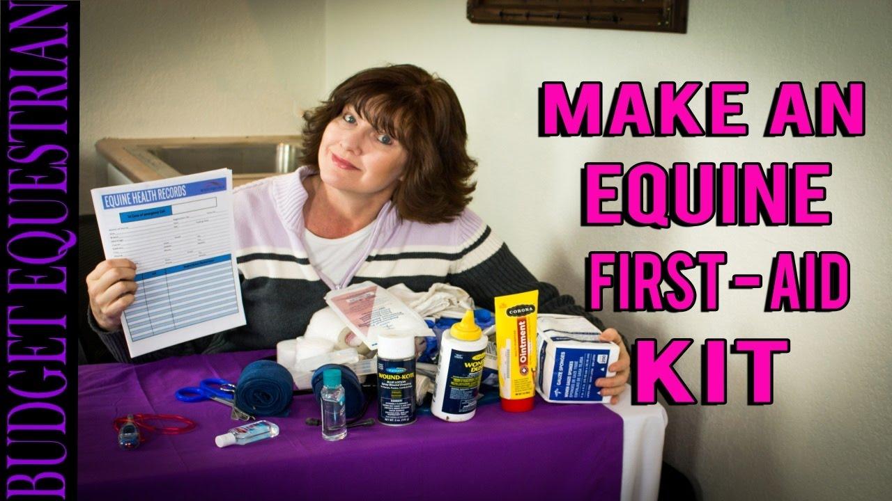 Equine First Aid Kit Doovi