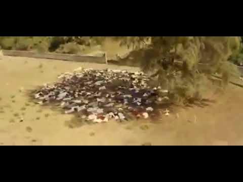 Геноцид мусульман в