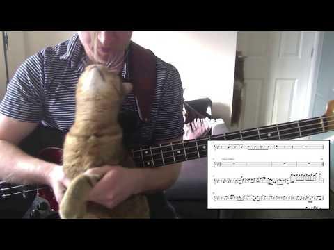 (Week 7) Vulfpeck 'The Birdwatcher' Bass Playthrough (with Free Transcription)