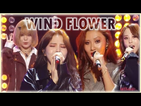 [Comeback Stage] MAMAMOO  - Wind Flower, 마마무 -  Wind Flower  Show Music core 20181201