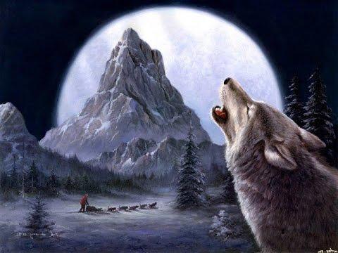 მგელზე ნადირობა (რუსეთში)