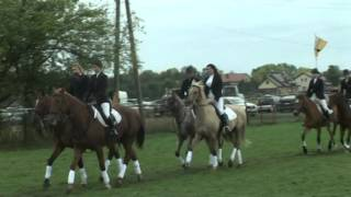 HUBERTUS w DRAGONIE 26 09 15 taniec koni
