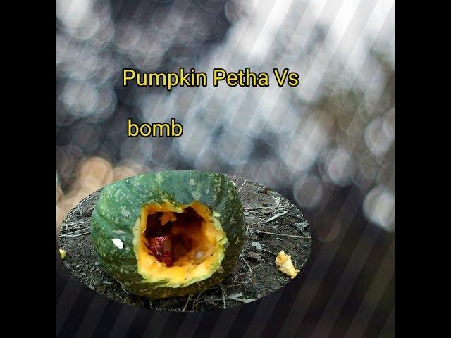 PumPkin Petha Vs Bomb  experiment...