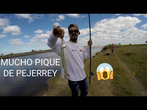PESCA DE PEJERREY EN LA CASCADA CANAL 15 RIO SALADO