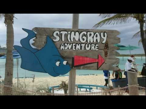Swimming With The Stingrays At Walt Disney's Castaway C