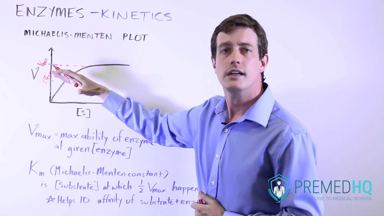 Download Enzyme Kinetics with Michaelis-Menten Curve   V, [s],  Vmax, and Km Relationships