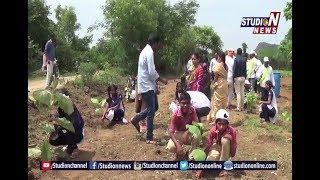 Collector Haritha Inagurates Harithaharam In Nekkonda | Rural Warangal | Studio N