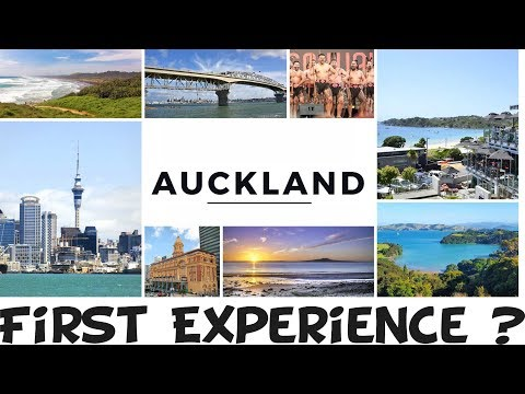 India To New Zealand Journey 2019 (Intake) Student Visa