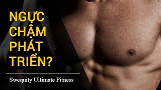 [N3] Tập gym mãi mà cơ ngực không phát triển?