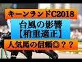 キーンランドカップ2018【稍重適正】台風の影響で馬場が渋ってこそ狙える馬は?