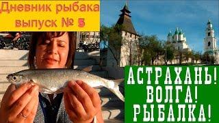 Астрахань! Волга! Рибалка! Щоденник початківця рибалки, випуск №5 (english subtitles)