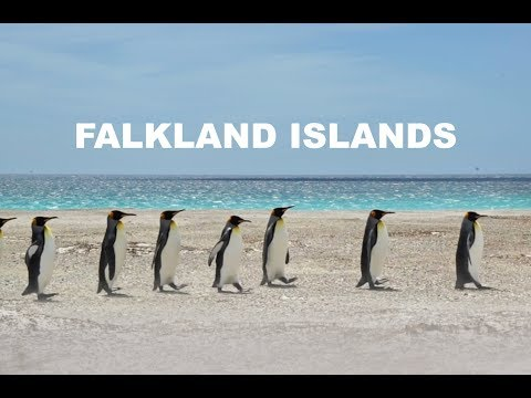 Falkland Islands visit - tour of the islands, December 2017 // Biotope Vlog