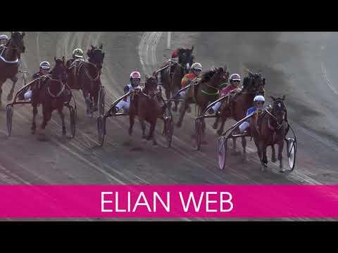 Välkommen till Elitloppet 2020 Elian Web!