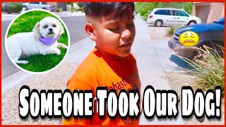 SOMEONE TOOK OUR DOG PRANK ON SON!