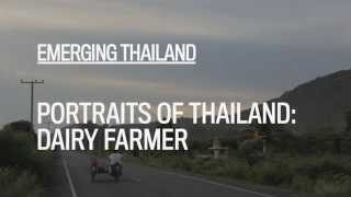 Portraits of Thailand: DAIRY FARMER