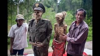 Индонезия — каждые 3 года выкапывает трупы родственников!