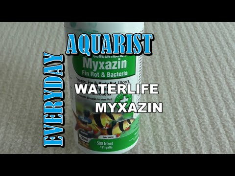 Myxazin (Waterlife) For Aquarium Fish With Fin & Body Rot, Ulcers, Cloudy Or Pop Eye