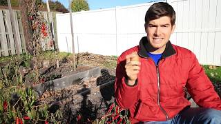Planting Potatoes The Irish Way Is AMAZING