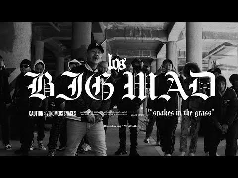 로스 (Los) - BIG MAD M/V (2019)
