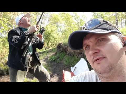 Сестрорецк. Озеро Разлив. Клёв в конце рыбалки.