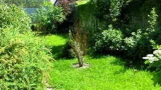 видео Продажа земельных участков по Носовихинскому шоссе — АН Загородный Мир