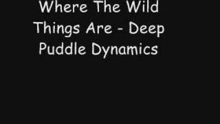 Watch Deep Puddle Dynamics Where The Wild Things Are video