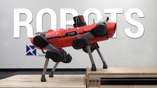 This Blind Robot Learned To Climb Any Terrain!