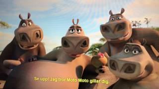 Moto Moto, man ska va tjock! Madagaskar 2