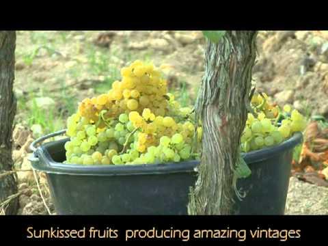 Cape Winelands Promo 2011